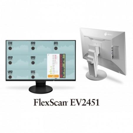 Ecran  Eizo FlexScan  16:9 EV2451